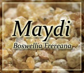 Frankincense Resin - Boswellia_frereana - Maydi frankincense - Boswellia frereana