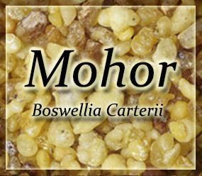 Frankincense Resin - Mohor Frankincenese - Boswellia carterii