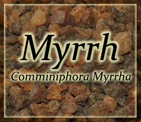 Myrrh Resin - Commiphora myrrha